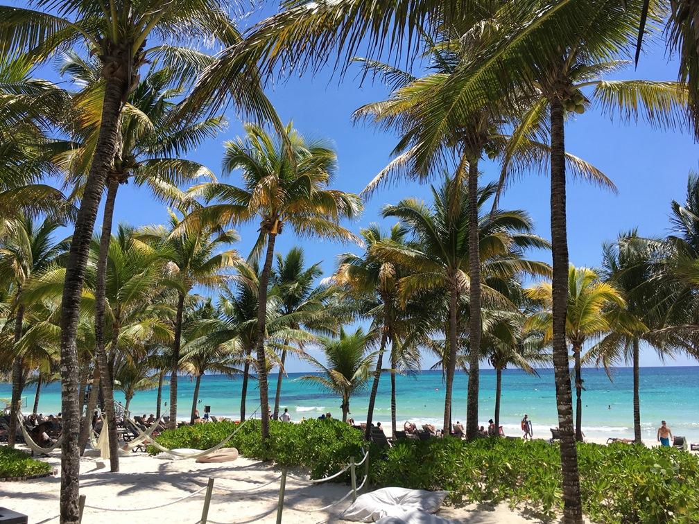 A Yucatan-félsziget pálmafás tengerpartjai varázslatosan szépek